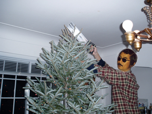 Bruno_tree